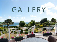 Gallery - Luxury Homes on the South Coast